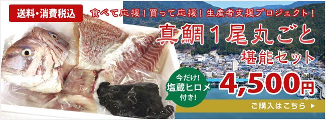 真鯛1尾丸ごと堪能セット